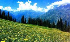 kashmir-photo1